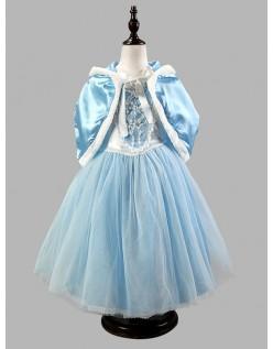 Vinter Fairy Prinsesse Kjole Blå